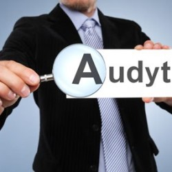 02-10.11.2015 Audits in China – Possibility to order an API manufacturer's audit